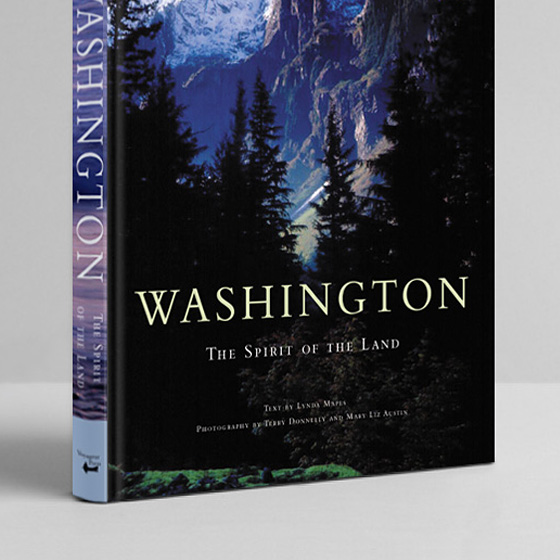 Washington 3D cover 3 final thumb